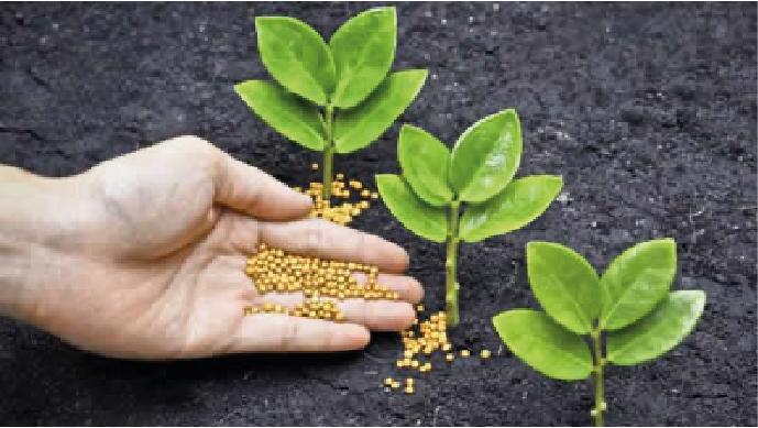 Fertilizantes Maria-guillen-agro